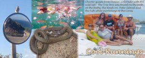 Children photograph wildlife in the Virgin Islands