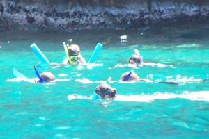 Children snorkel the Virgin Islands